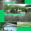 Octubre 2008: Semana gris en Paquera