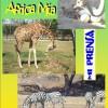 2009: Notas de Africa Mía