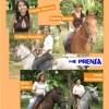 2008: Entre mangos y caballos