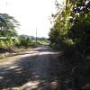 Falta de suministro eléctrico y una rama fueron las causas de las averías del pasado fin de semana: La Zoila en Río Grande pasó la madrugada del domingo sin electricidad porque nadie hizo el reporte