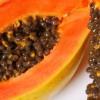 Desde la parcela: Producción y Venta de Frutas