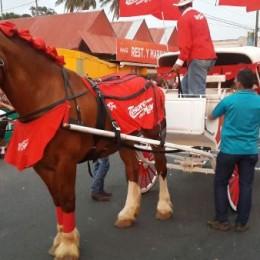 Caballistas desfilaron este sábado por el Paseo de los Turistas en el Tope de los Carnavales Puntarenas 2015
