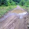 Se encuentra en mal estado: Vecinos solicitan que se repare camino al barrio La Zoila en Río Grande de Paquera