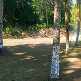 No llegó permiso del Ministerio de Salud: Concejo Municipal de Paquera dice que organizadores de evento festivo de fin y principio de año en Playa Pájaros no tienen permisos
