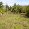 Ideal para construir: Se vende lote de 441 metros cuadrados en barrio La Zoila en Río Grande de Paquera