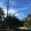 Suspensión eléctrica en la zona peninsular este martes 08 de noviembre 2016: En Lepanto y Paquera será solo unos minutos, mientras que en Jicaral y otros sectores durante seis horas