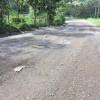 Entre Playa Naranjo y Paquera: Dos consorcios apelan adjudicación de licitación para asfaltado de la Ruta Nacional 160
