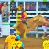 Verano Toreado 2018: El toro El Muchacho Alegre y el montador Kevin Morales fueron los mejores en Cóbano de Puntarenas
