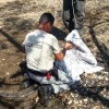 Operativo conjunto con el Minae: Oficiales del Guardacostas capturan y reubican cocodrilo que merodeaba cerca de varias viviendas en Jicaral de Lepanto