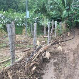 Mi Prensa carece de esos servicios en La Zoila, Río Grande: Puerto Paquera sin telefonía e internet fijo desde hace casi una semana