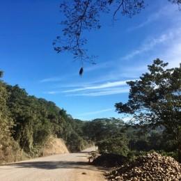 Ruta Nacional 160 entre Paquera y Playa Naranjo permanecerá libre de paso hasta el 03 de enero 2020: Conductores deben transitar con precaución a una velocidad máxima de 30 Km por hora