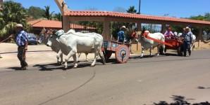 Galería fotográfica y nota del desfile de boyeros de las Fiestas Peninsulares Cóbano 2020