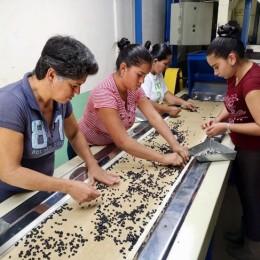 950 familias beneficiadas: Inder aplica moratoria de cuatro meses a quienes mantienen créditos con el instituto