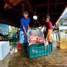 Nandayure, Guanacaste: Repunta Pesca del Pargo Manchado en Coyote y Bejuco