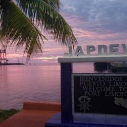 97 costarricenses retornarán al país desde crucero: Recepción se hará en Puerto Limón bajo estrictos parámetros de prevención y control