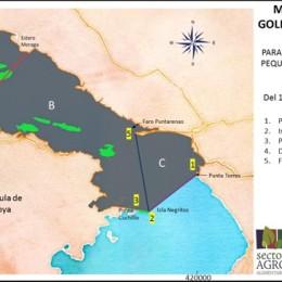 1.473 pescadores artesanales y ayudantes recibirán subsidio por veda durante 3 meses: Se autorizó pesca para consumo doméstico en el Golfo de Nicoya durante este periodo de restricción