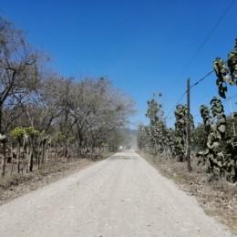 Será virtual el 11 de agosto 2020: Realizarán consulta para exponer el proyecto de mejoramiento de drenaje, colocación de base y tratamiento bituminoso en camino Santa Cecilia – San Rafael de Paquera
