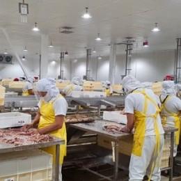 Industria atunera de Costa Rica genera 4000 empleos directos: Estabilidad de puntarenenses que laboran en el sector corre peligro si se aprueba proyecto que se discute en la Asamblea Legislativa