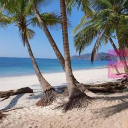 MINAE cierra de manera preventiva playas Quesera y Posa Colorada: De acuerdo a la resolución no cumplen con los requerimientos sanitarios necesarios para la prevención del COVID-19